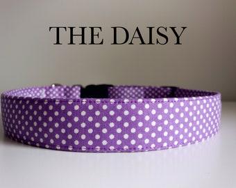 The Daisy, Classic Purple Polka Dot Collar