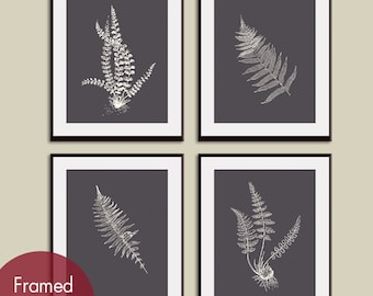 Ferns Garden Botanical Prints (Series D) Set of 4 - Art Prints (Featured in Charcoal Background and Cream)