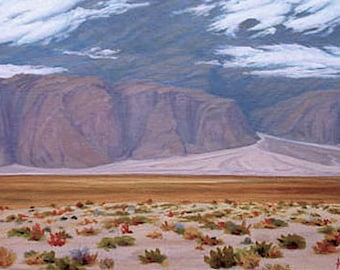 Desert painting - 'Clearing Storm - Death Valley' - original Landscape Painting - oil - impressionist - clouds - western - framed - wall art