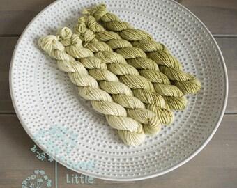Set Mini DK skein - Beautiful hand dyed moss hank superwash merino wool