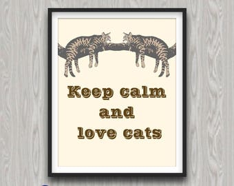 DISCOUNT COUPONES, Cat Poster, Brown, Funny Cat Quotes And Sayings, All  About