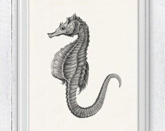 Gray Seaside wall art seahorse  - sea life print - Marine  sea life illustration A4 print- bathroom wall decoration SAS058