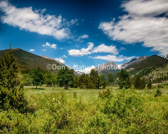Horseshoe Park, Rocky Mountain National Park, Colorado. #2123