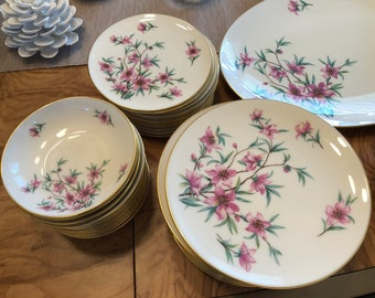 Peachtree China by Lenox  12-Piece+ Place Setting