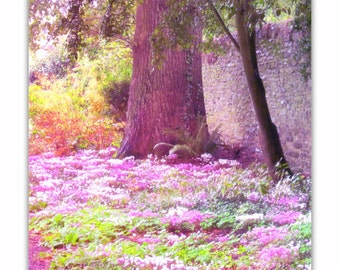 Enchanted Forest, Dreamy Photo, Nursery Print, Instant Download, Nature Photography