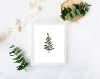 """Water Color Reproduction, FERN, Art, WATERCOLOR, Print, Minimalist, Nature, """"Littles Series"""", Fern Leaf Wall Art, Home Decor, Green, Foliage"""