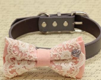 Blush Lace dog bow tie collar, Charm (Heart), Puppy Gift, Pet wedding accessory, Birthday