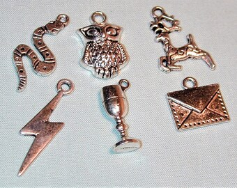 Harry Potter Inspired Charm Collection  6pc  Silvertone C233