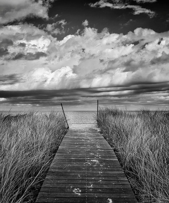 Marthas vineyard photography limited edition print black