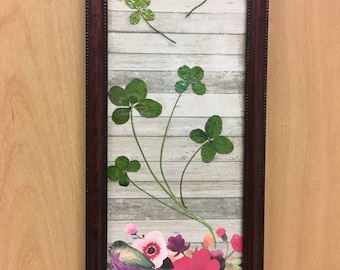 Lucky Bird-Four-leaf clover pictures featuring 7 authentic, found in nature, 4-leaf clovers.  Each framed picture is one of a kind.