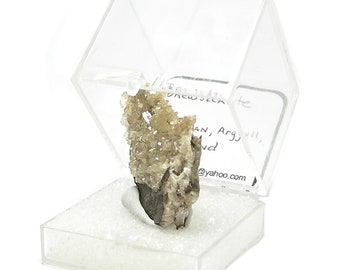 Brewsterite Rare Zeolite Crystals on Rock Matrix Thumbnail Mineral in museum display box from Scotland