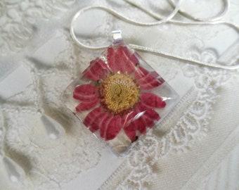 Purple Daisy Glass Diamond Shaped Pressed Flower Pendant-April's Birth Flower-Symbolizes Loyal Love-Nature's Art