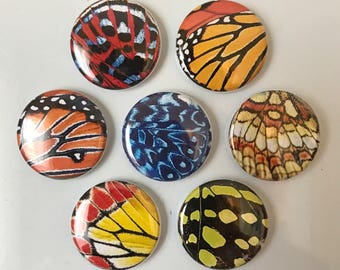 Butterfly Wings Magnets - set of 7