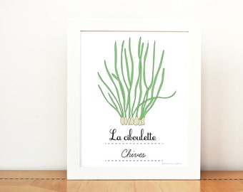 Kitchen Art Chives French Herbs print - 8x10 art print - Green Home decor Eco friendly Food Foodie Culinary Gourmet cook chef