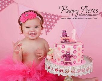 Pink on Pink tutu, hot pink and fushia birthday tutu with headband.....newborn tutu, baby tutu, toddler tutu, photography  prop