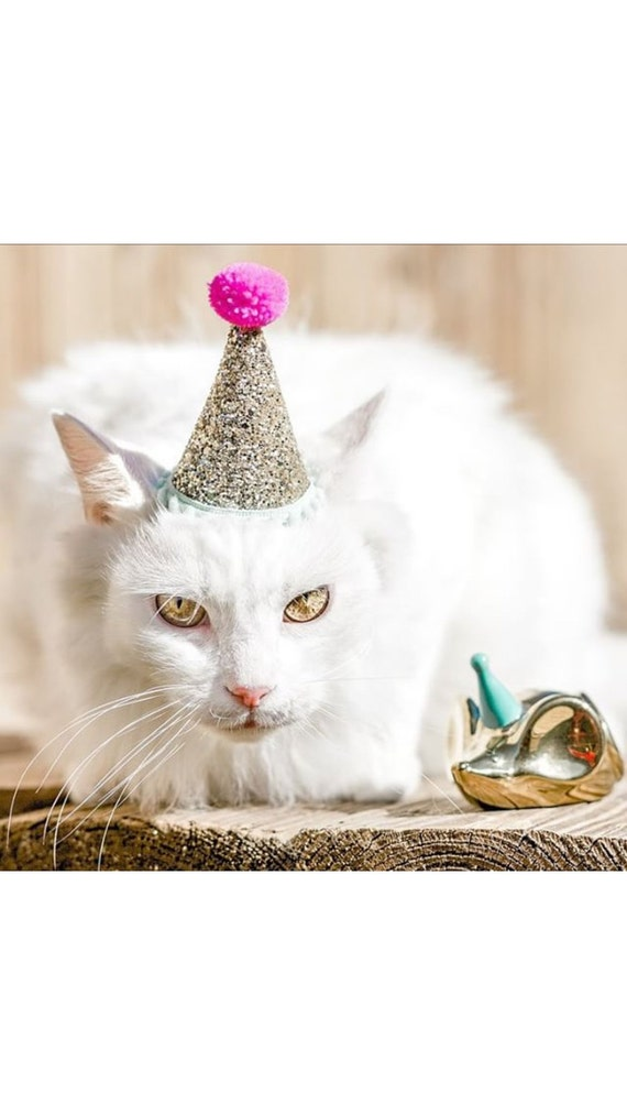 Cat Costume || Cat Birthday Hat || Cat || Cat Crown || Cat Costumes || Party Hat