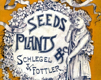 Schlegel 1890  Seed Company  Bright Colorful Print  Vintage Reproduction Print 11 x 17