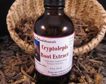 CRYPTOLEPIS Root Extract / Tincture   4 ounce dropper bottle