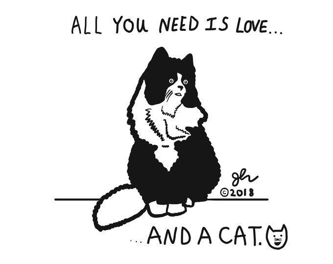 All You Need Is Love... And A Cat Shirt Humor Cats Animal Lovers Vegan Vegetarian XVX Punk TShirt