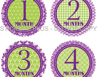 Baby Month Stickers Plus FREE Gift Lime Green Purple Baby Shower PRECUT Bodysuit Stickers Baby Monthly Age Stickers Photo Prop