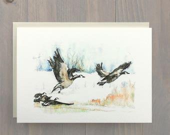 Snow Geese, Beaverhill Lake, Alberta, Canadian Greeting Card, Watercolor Painting, Artist Card, Blank Card