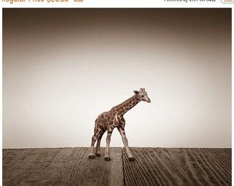 FLASH SALE til MIDNIGHT Nursery Decor, Baby animal art, Baby room ideas, Safari animals, Baby Giraffe One Photo Print