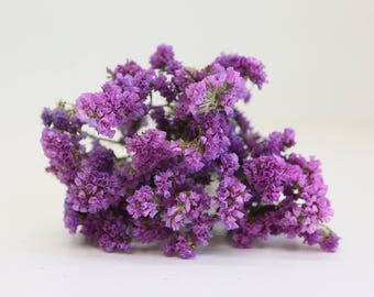 Licac statice sinuatar - dried flowers - botany lilac flowers wedding natural in