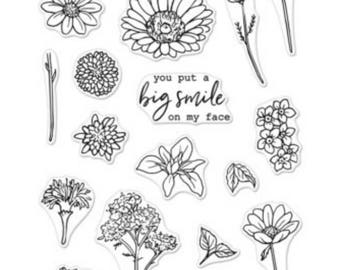 Hero Arts Little Florals CM193 Clear Stamps matches dies DI412