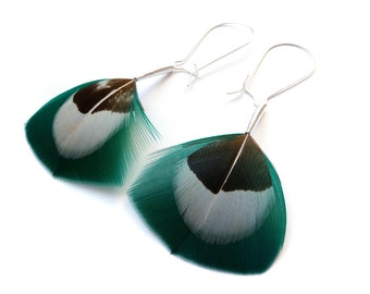 Long Feather Earrings in Teal, White and Brown on Large Kidney Wires