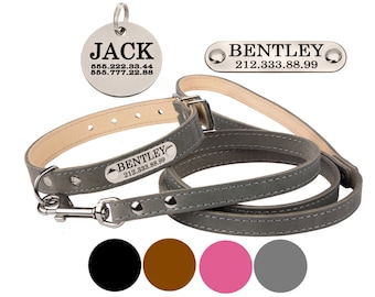 Leather Dog Collar, Personalized Dog Collar, Dog Collar and Leash, Nameplate Dog Collar