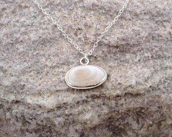 Shell Necklace, White Limpet Shell Necklace made of Sterling Silver - Shell Collection