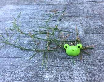 Tepy the Frog Bean Charm