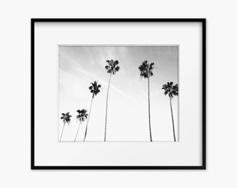 Monochrome Palms - Palm Tree Print - Beach Wall Art