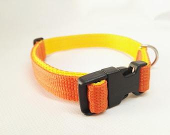 Double 2 cm collar