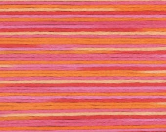 COSMO Embroidery Thread - Season Variegated SE80-5003 - 100% cotton Cosmo Floss - Hand Quilting Stitching- Japanese