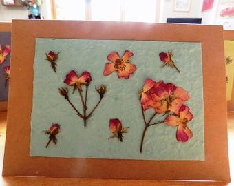 Real Flower, Roses, Blank Greetings Card. Pressed Flower Card. Blank inside for your own message. Hand-made card.