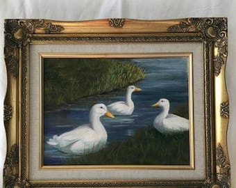 Three Adult White ducks In the Water