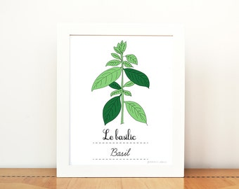 Kitchen Art Basil French Herbs print - 8x10 art print - Green Home decor Eco friendly Food Foodie Culinary Gourmet cook chef