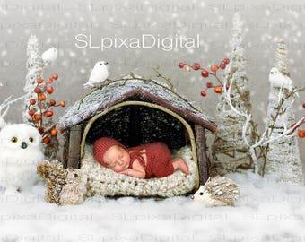 Digital background digital backdrop newborn christmas winter #31