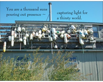 A THOUSAND SUNS ~ Poetry Postcard by Author Cristina M. R. Norcross (Postcards from the Eternal Collection)