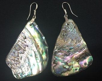 Paua Shell & Sterling Silver Drop Earrings