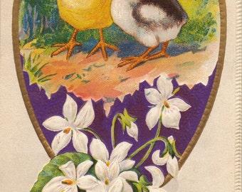 Adorable Baby Chicks & Flowers Vintage Easter Postcard