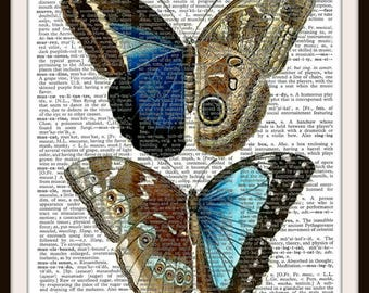 Butterfly Blue no.2 -- Vintage Dictionary Art Print---Fits 8x10 Mat or Frame