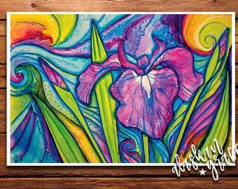 Wild Iris 8x12 Print- Wild Flower- Alaskan Art