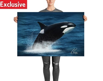 Whale Wall Art - Majestic Orca whale print, perfect home decor
