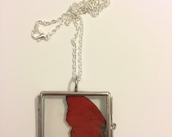 Real Insect Wing Necklace. Red glider butterfly. Double Sided Glass Locket.