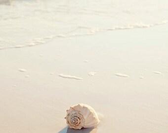 beach bathroom decor,  seashell art, seashell photograph, beach cottage decor, beach photography landscape, sunset, beach home decor