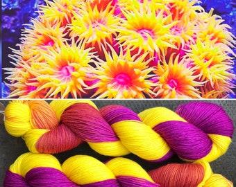 Anemone, sea life inspired merino nylon sock yarn