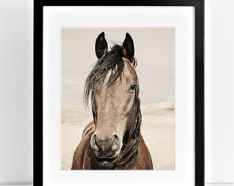 Western Horse Photograph in Color, Equine Wall Art, Physical Print