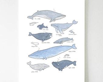 Impression de baleine, pépinière nautique baleine décoration murale art